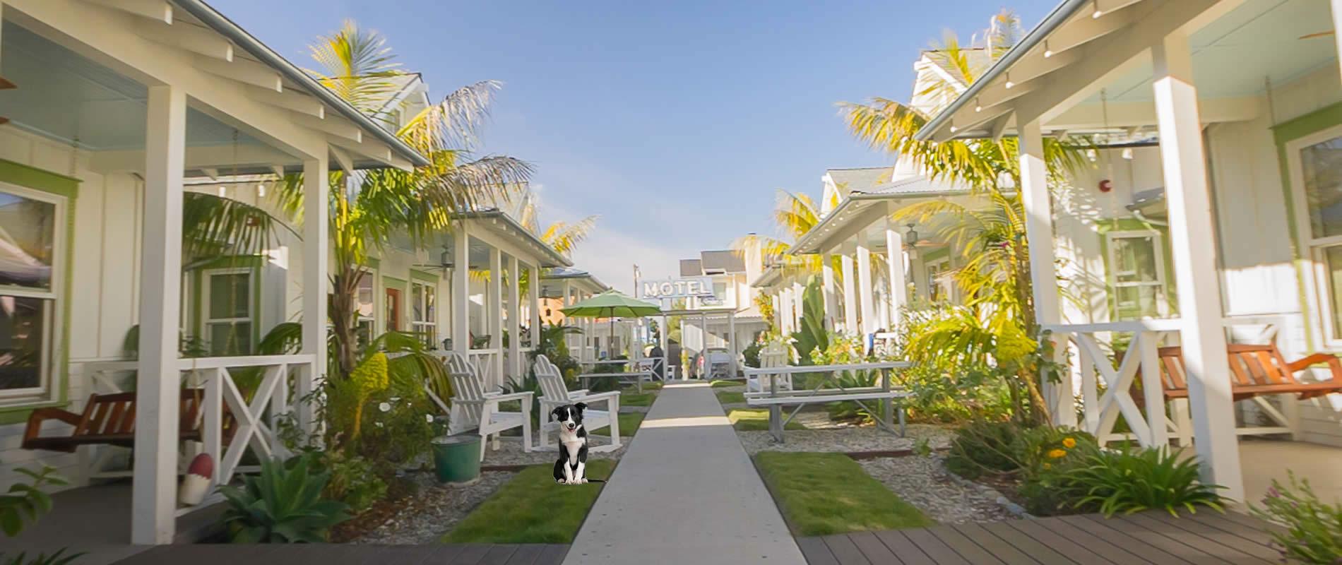 pet-friendly carpinteria beach cottages